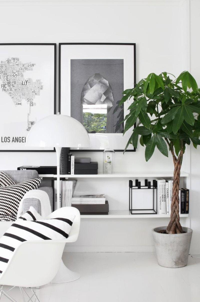 Điểm xanh cho không gian phòng khách bừng năng lượng mỗi ngày