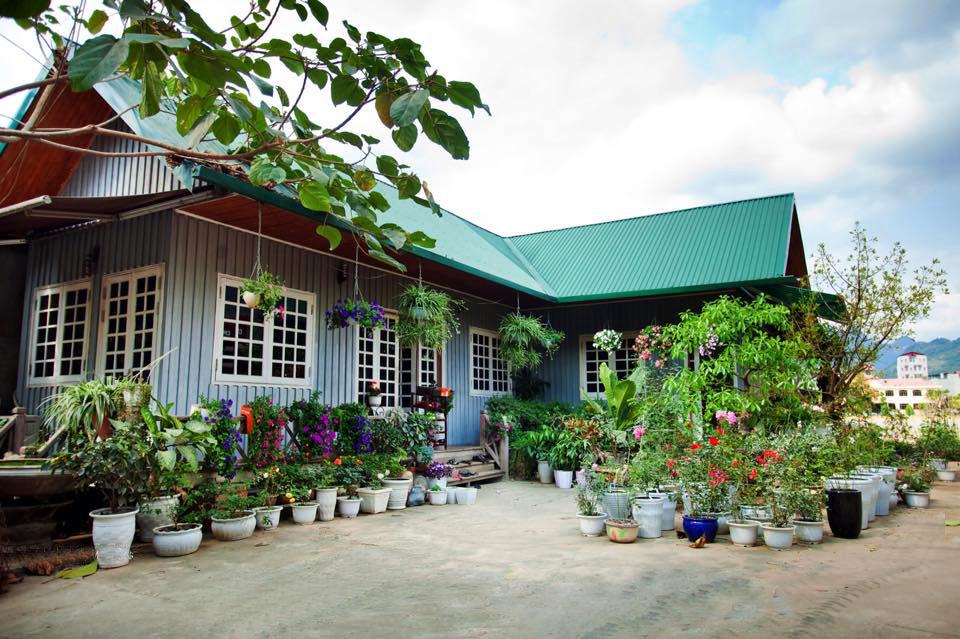 Ngôi nhà gỗ xinh xắn với vườn hoa hồng rực rỡ sắc màu - 01