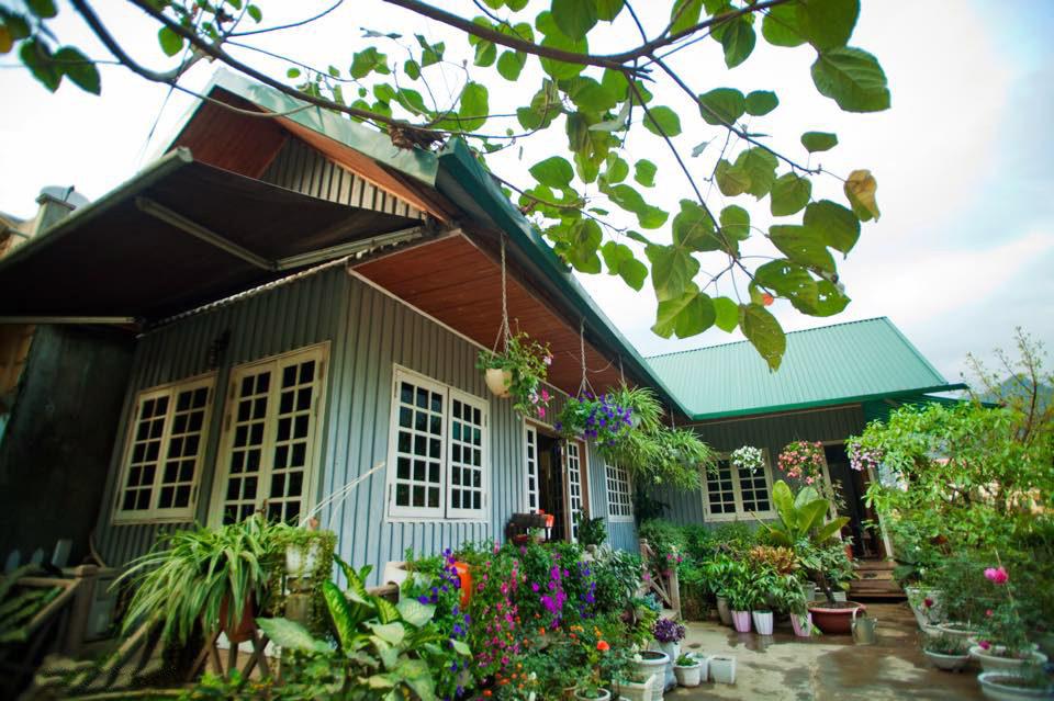 Ngôi nhà gỗ xinh xắn với vườn hoa hồng rực rỡ sắc màu - 02