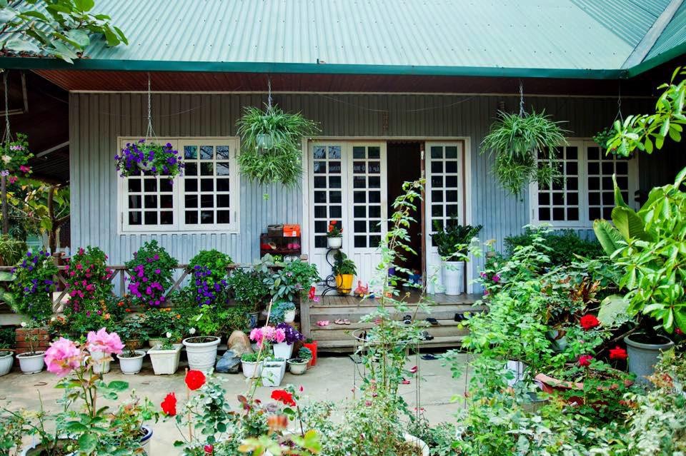 Ngôi nhà gỗ xinh xắn với vườn hoa hồng rực rỡ sắc màu - 03