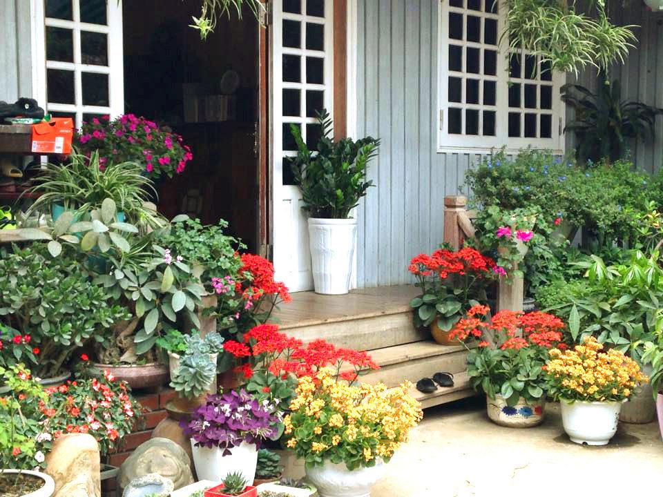 Ngôi nhà gỗ xinh xắn với vườn hoa hồng rực rỡ sắc màu - 04