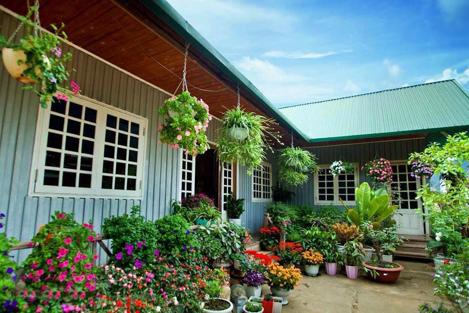 Ngôi nhà gỗ xinh xắn với vườn hoa hồng rực rỡ sắc màu - 10