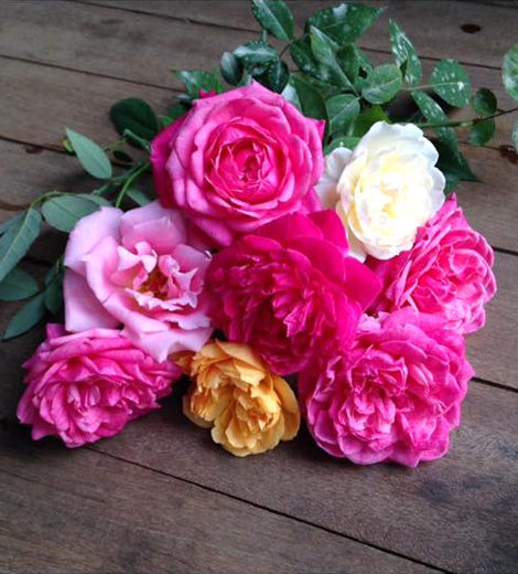 Ngôi nhà gỗ xinh xắn với vườn hoa hồng rực rỡ sắc màu - 12