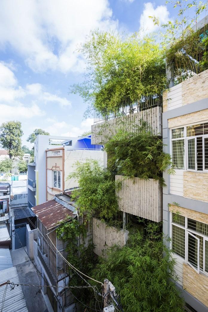 Nhà phố trồng cây xanh nằm trong hẻm hẹp
