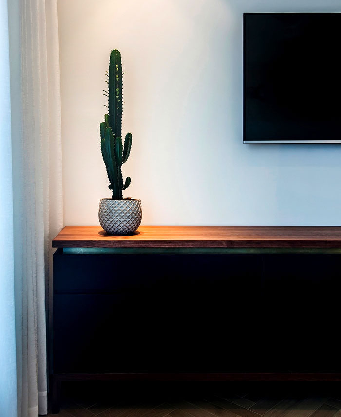 Gợi ý nội thất tông màu trầm cho gia chủ thích sự tĩnh lặng