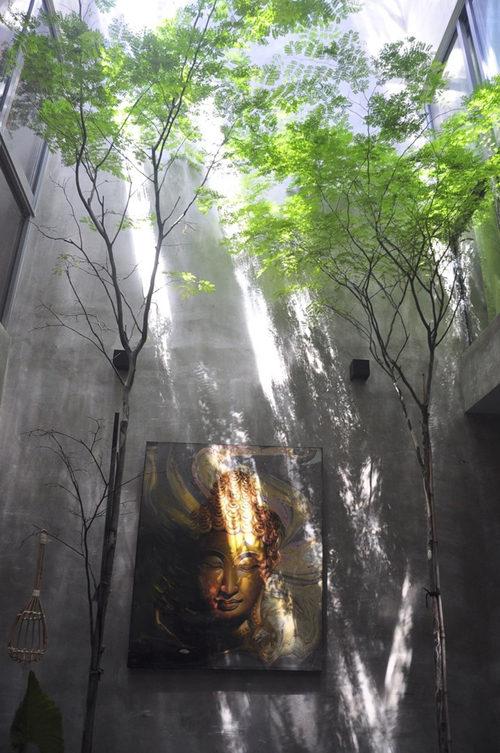 Khám phá ngôi nhà ống phủ cây xanh mướt tại Malaysia