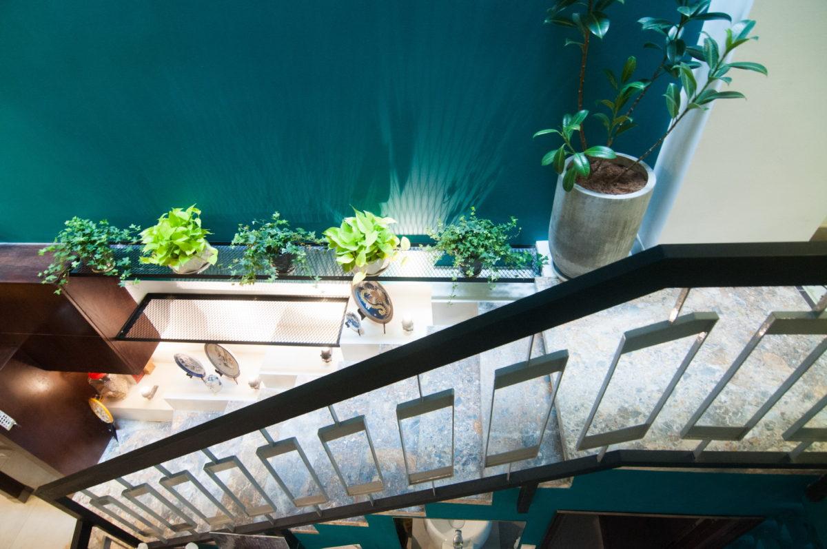 Mẫu nhà phố hẹp 3 m chiều ngang mang phong cách nhiệt đới đẹp lạ